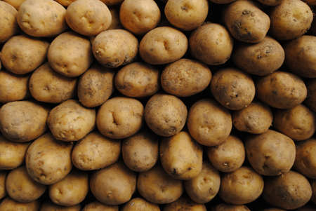 Indispensable of meals, quality potatoes in the market