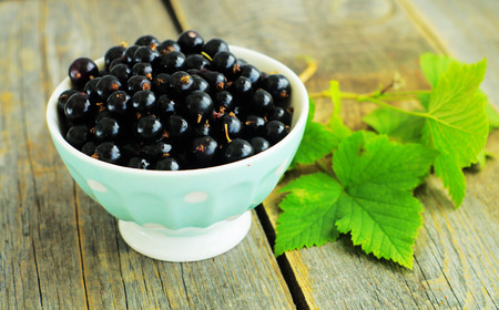 minty:                     Berries of blackcurrant in minty dish on the wooden background         Stock Photo