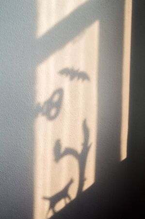 Halloween shadows. Light from a window.