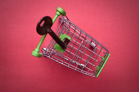Shopping cart isolated on green background. Key to the shop. 版權商用圖片