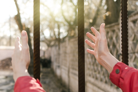 Woman pulls her hands through the bars to the sun. Female freedom concept. Standard-Bild - 116066479