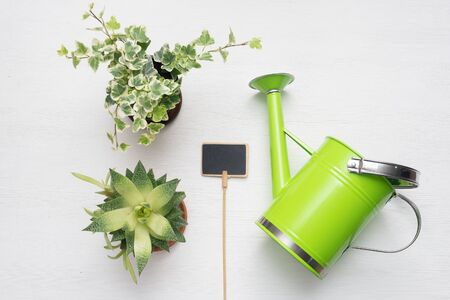 Green plants in a flower pots, watering can and nameplate on white wooden table background.