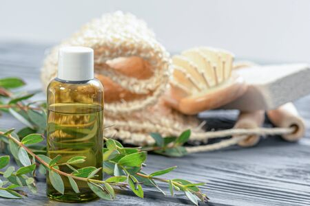 Eucalyptus essential oil in the bottle and a tree eucalyptus tree branch with green leaves close up.