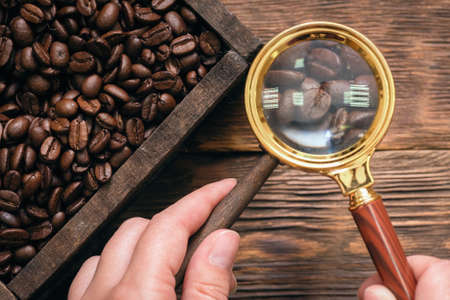 Woman is selecting a coffee beans with magnifying glass. Selected coffee concept.