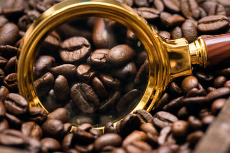 Coffee beans and magnifying glass. Selected coffee concept. Banco de Imagens