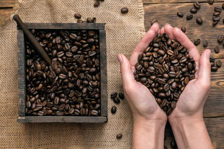 Coffee beans in the wooden box container and female hands close up background. Banco de Imagens