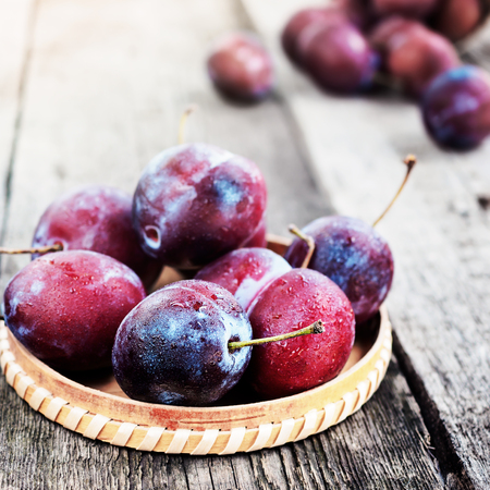 Fresh ripe plum prunes crop harvest, on wood background, organic, healthy food, rustic vintage retro style