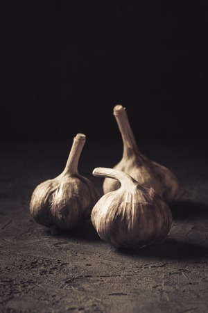 Garlic fresh Food Still Life toned low key