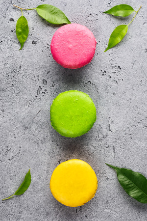 Colorful various French sweet macaroons dessert cake macarons on gray background decorated with green leaves top view flat lay