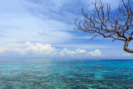 ocean and sea: Similan Islands, Andaman Sea, Thailand.