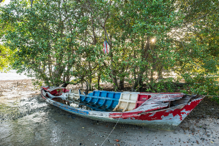 mangroves: Boat wreck with Mangroves.