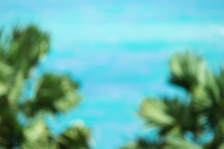 Blurred image of sea and palm tree background. Stock Photo