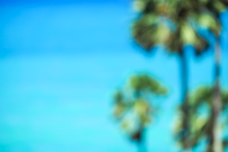 Blurred image of sea and sugar palm tree background.