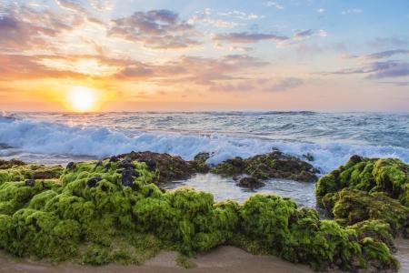 Beautiful sunrise over mossy rocks at Sandy Beach in Oahu, Hawaii Stock Photo