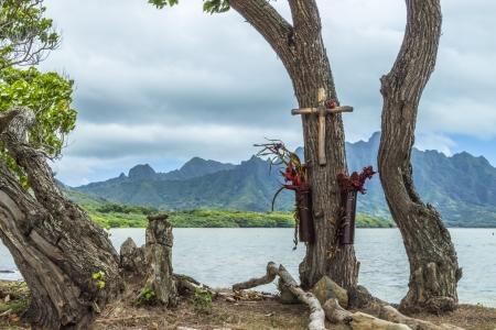 honoring: Hawaiian tree memorial honoring the loss of loved ones Stock Photo