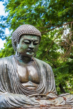 foster: A replica of Daibutsu, The Great Buddha of Kamakura, at Foster Botanical Gardens on Oahu, Hawaii