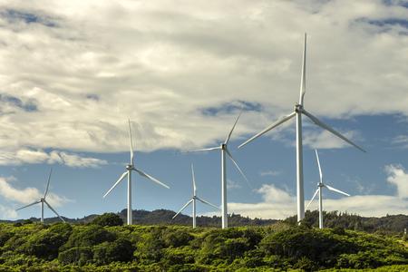 wind farm: The Kahuku Wind Farm on Oahu, Hawaii