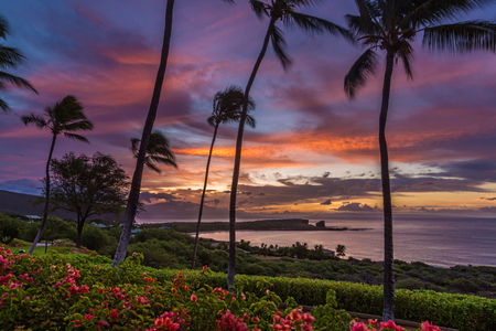 'palm trees': Sunrise over Menele Bay on the island of Lanai, Hawaii Stock Photo