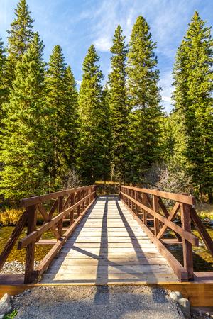 Wooden bridge crossing Hyalite Creek in Hyalite Canyon near Bozeman, Montana