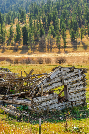 An abandoned log house in a colorful autumn field Stock Photo