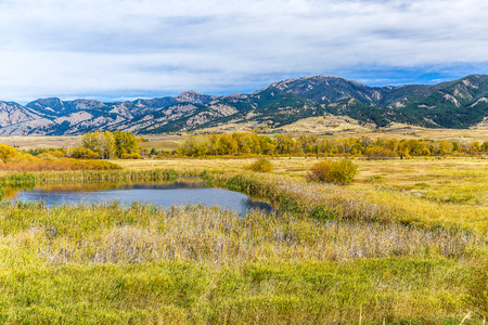 bridger: A pond in beautiful autumn fields at the foot of the Bridger mountain range in Cherry Creek Nature Preserve on the outskirts of Bozeman, Montana