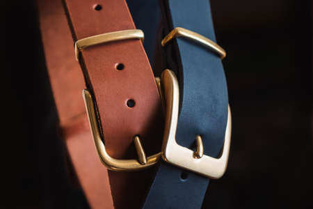 Blue and brown leather belt with gold buckles on a black background is a big plan