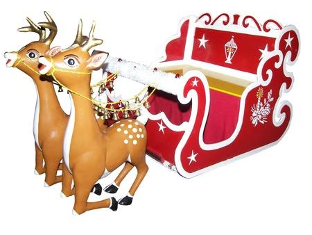 Reindeer for christmas photo