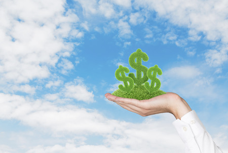 dollar grass letter in hand on sky background photo