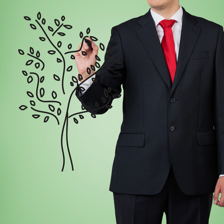 businessman drawing tree on green background photo