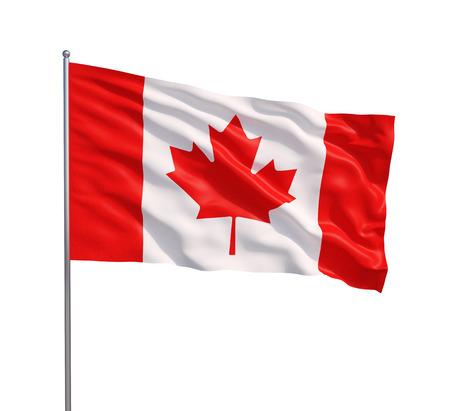白い背景の上のカナダの旗を振る