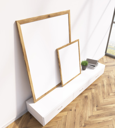 show plant: Two blank frames on white floor shelf, white wall, window to the right. 3D rendering