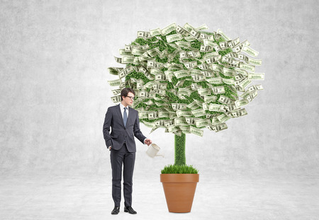 watering pot: Businessman watering pot with money tree. Concrete background. Concept of profit. Stock Photo