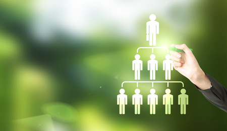 delegate: Delegate concept with businesswoman hand drawing abstract employee hierarchy pictogram on green background