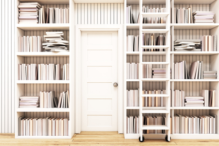 gain access: Home library interior with bookshelves by the sides of a door and a ladder to gain access to the books on high shelves. 3d rendering.