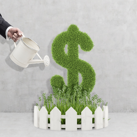 cash crop: Hand of a businessman in a suit with a watering can watering a plant shaped as a dollar sign. Concept of investment management.
