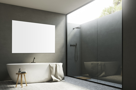 bathroom mirror: Corner of a gray bathroom interior with white walls, a tub standing near it, a poster hanging above it and a shower with a glass wall. 3d rendering, mock up Stock Photo