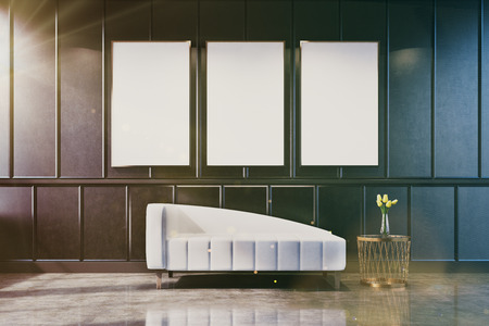 luxury apartment: Gray living room interior with a poster gallery on the wall. There is a white couch and a coffee table with a flower vase. 3d rendering mock up toned image