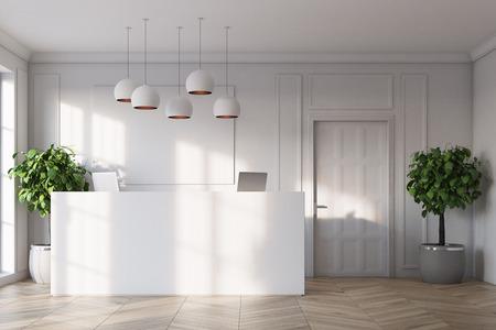 흰색 리셉션 카운터는 흰 벽, 나무 바닥, 화분에 심은 나무와 문으로 사무실에 서 있습니다. 3 차원 렌더링 조롱