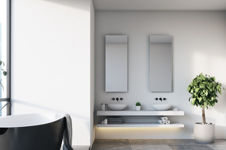 White bathroom interior with a black tub, two sinks with narrow mirrors near them and a tree in a pot in the corner. 3d rendering mock up