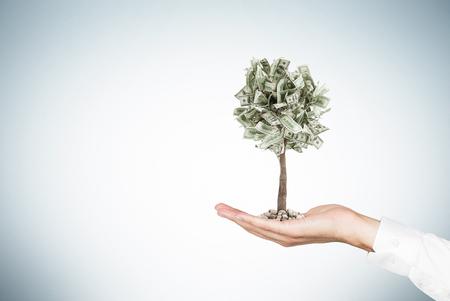 Schließen Sie oben von der Hand eines Geschäftsmannes, die einen kleinen Dollarbaum bei der Stellung gegen eine graue Wand hält. Attrappe, Lehrmodell, Simulation