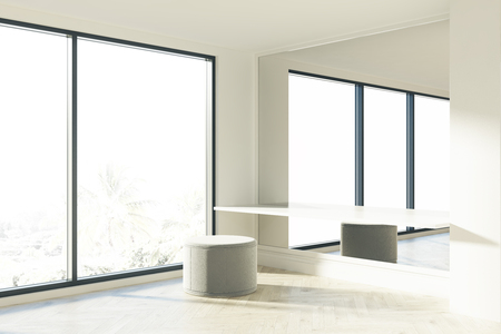 Gray puffing is standing near a white table in a room with a large mirror and a panoramic window. 3d rendering