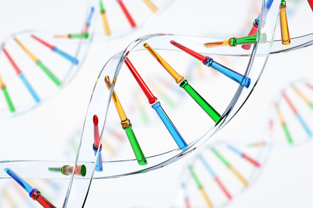 Close up of a transparent and colorful DNA chain against a white background. Concept of science and medicine. 3d rendering Stock Photo