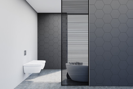 Gray hexagon tile bathroom interior with two toilets and a white bathtub behind a wooden decoration element. 3d rendering mock up
