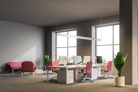 Open plan office corner with gray walls, a carpet on the floor, white computer tables with pink chairs and windows with a tropical view. Sofa and armchairs waiting area. 3d rendering mock up