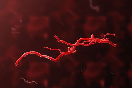 Red virus or bacteria cell over red background. Concept of disease control, medicine and science. 3d rendering