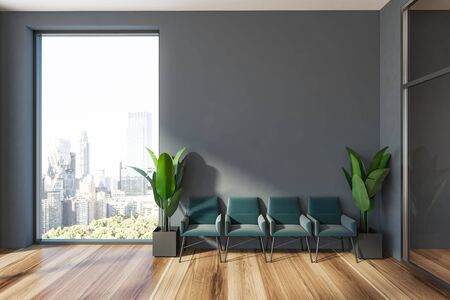 Minimalistic office waiting room interior with gray walls, wooden floor, row of blue armchairs with potted plants near them and window with cityscape. 3d rendering mock up