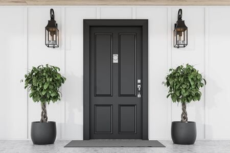 Stylish black front door of modern house with white walls, door mat, two trees in pots and lamps. 3d rendering