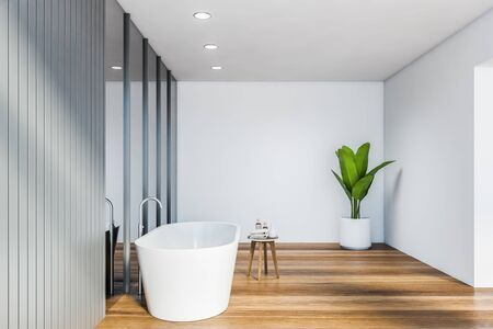 Side view of spacious bathroom with white and gray walls, wooden floor, comfortable white bathtub and vertical mirrors. 3d rendering