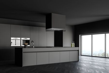 Corner of stylish minimalistic kitchen with dark grey walls, wooden floor, comfortable island with sink and cooker and two built in ovens. Window with calm scenery. 3d rendering Reklamní fotografie