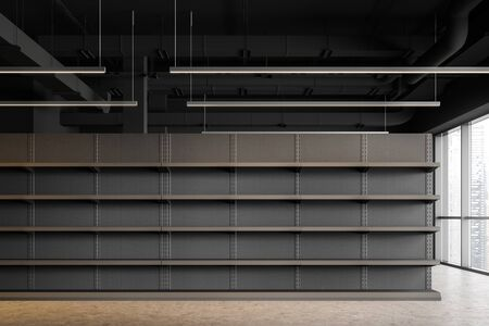 Interior of industrial style supermarket or warehouse with empty grey shelves and concrete floor. Concept of consumerism and storage. 3d rendering